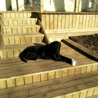 Pattern D Decking 32 x 120mm
