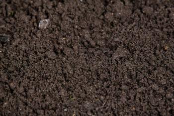 Ericaceous Top Soil Yellow Bulk Bag